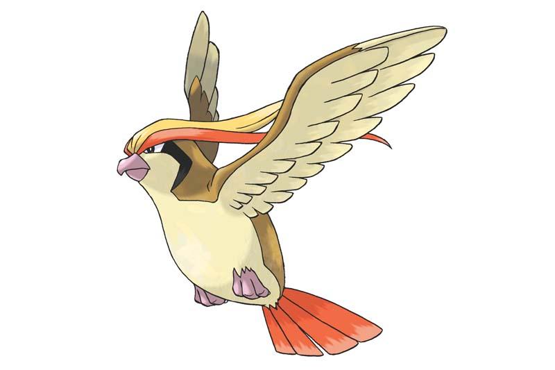 Mejor Pokémon tipo volador: PIDGEOT