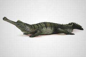 Donde vive el gavial